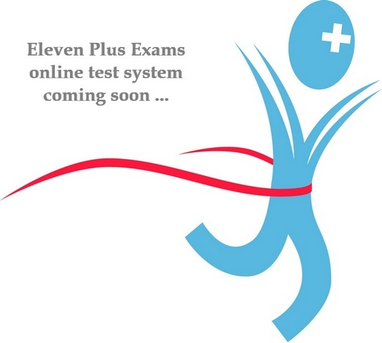 Eleven Plus Exams Online Tests System